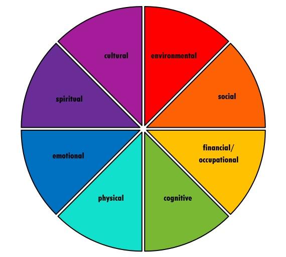 Wellness Wheel Child Amp Youth Health Network